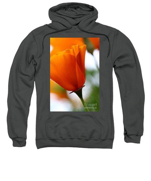 Orange California Poppy . 7d14789 Sweatshirt