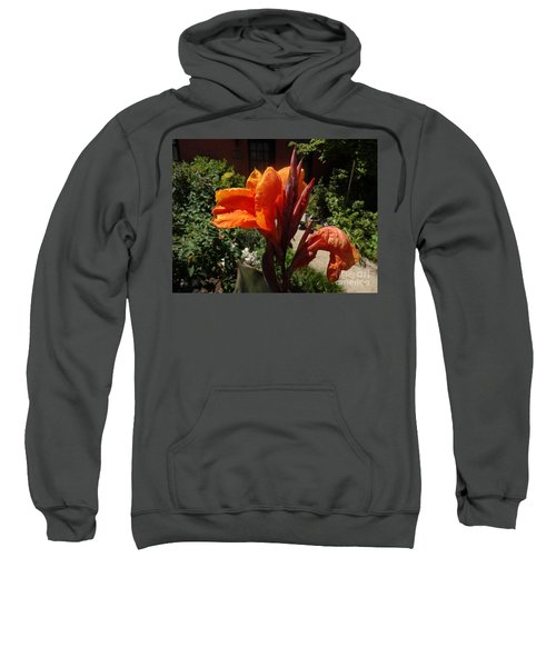 Sweatshirt featuring the photograph Orange Canna Lily by Rod Ismay