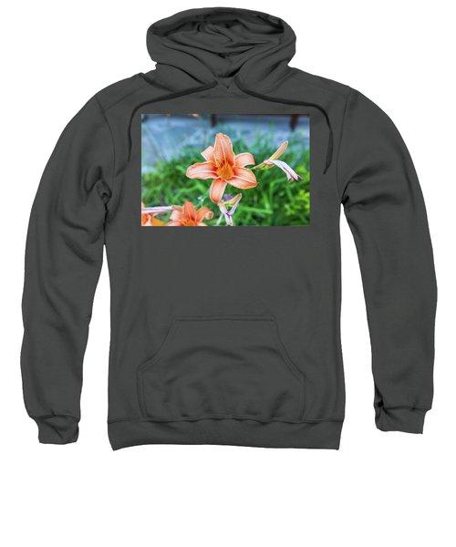 Orange Daylily Sweatshirt