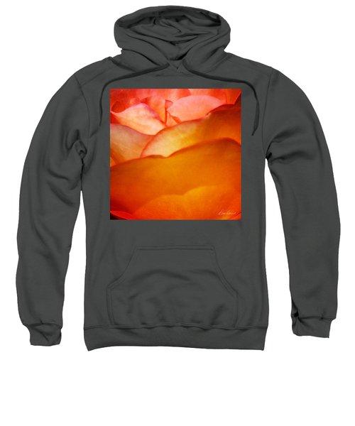 Orange Passion Sweatshirt