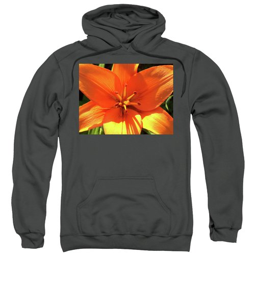 Orange Pop Sweatshirt