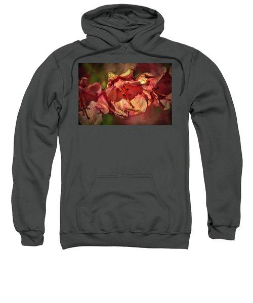 Orange Trio #h5 Sweatshirt