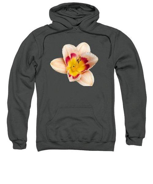 Orange Daylilies Sweatshirt
