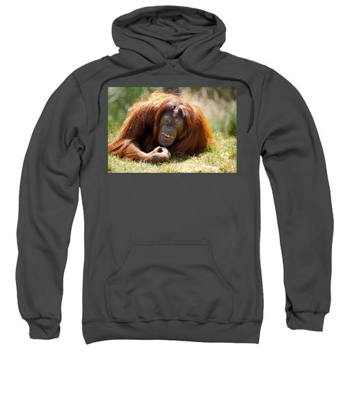 Orangutan In The Grass Sweatshirt