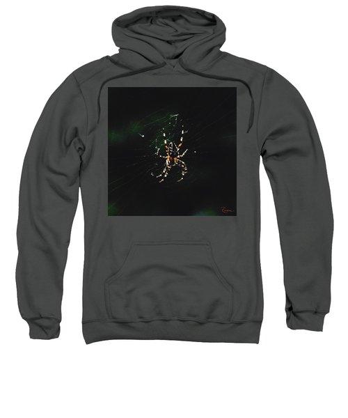 Orb Weaver Sweatshirt