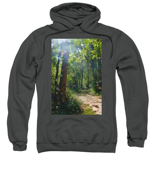 Orbs In The Woods Sweatshirt