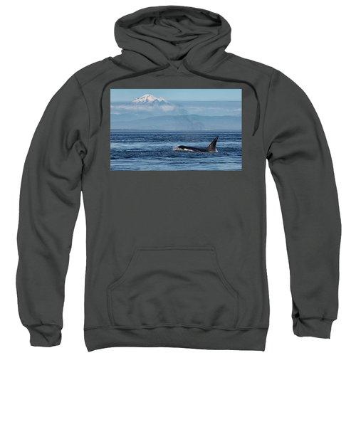Orca Male With Mt Baker Sweatshirt