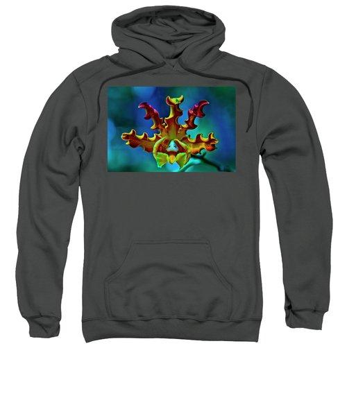 Orchid Sweatshirt