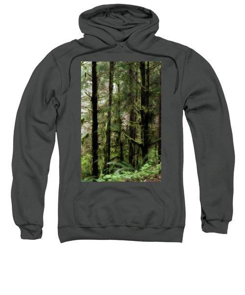 Oregon Old Growth Coastal Forest Sweatshirt