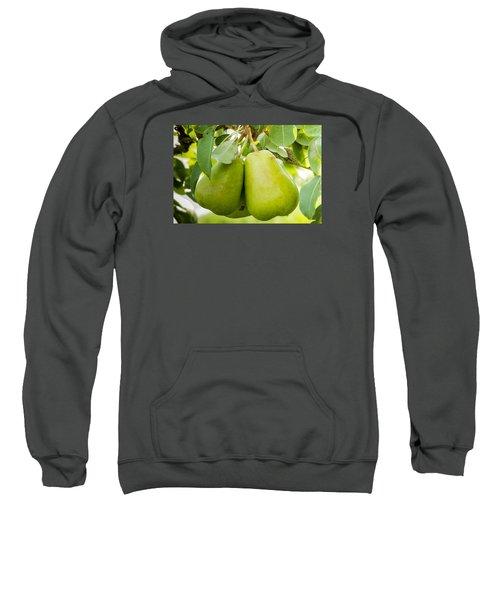 Organic Pears Sweatshirt