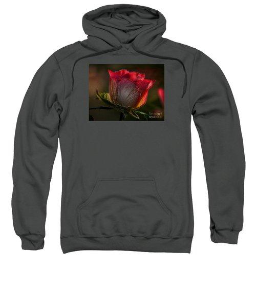Organic Rose Sweatshirt