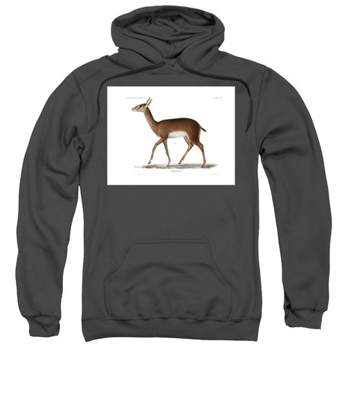Sweatshirt featuring the drawing Oribi, A Small African Antelope by J D L Franz Wagner