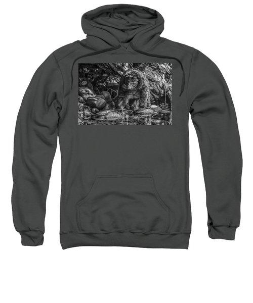 Oservant Black Bear  Sweatshirt
