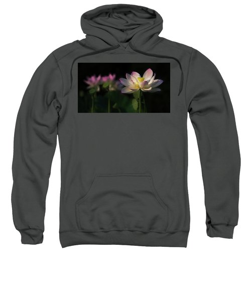 Out Of The Mud Sweatshirt