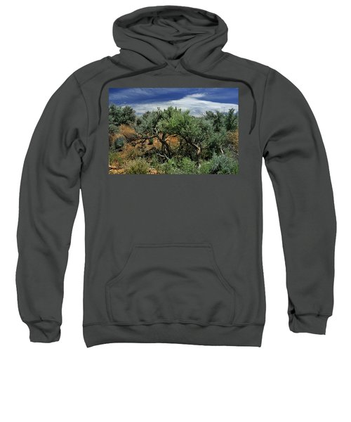 Out On The Mesa 3 Sweatshirt