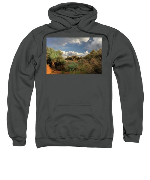 Out On The Mesa 4 Sweatshirt