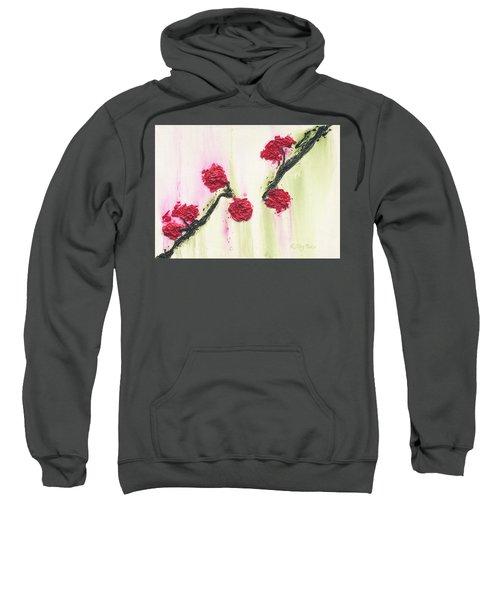 S R R Seeks Same Sweatshirt