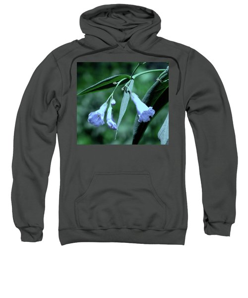 Over Done Blue Sweatshirt
