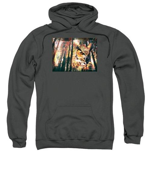 Owl Medicine 2015 Sweatshirt
