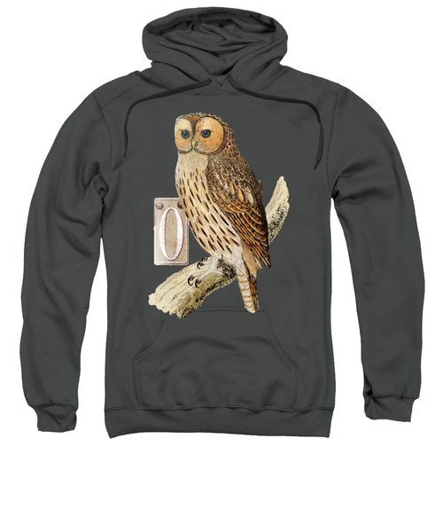 Owl T Shirt Design Sweatshirt by Bellesouth Studio