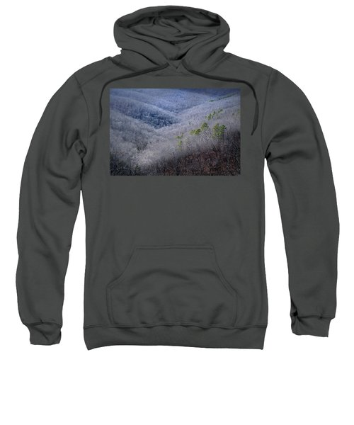 Ozarks Trees #4 Sweatshirt