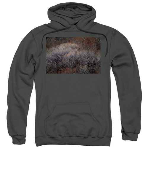 Ozarks Trees #5 Sweatshirt