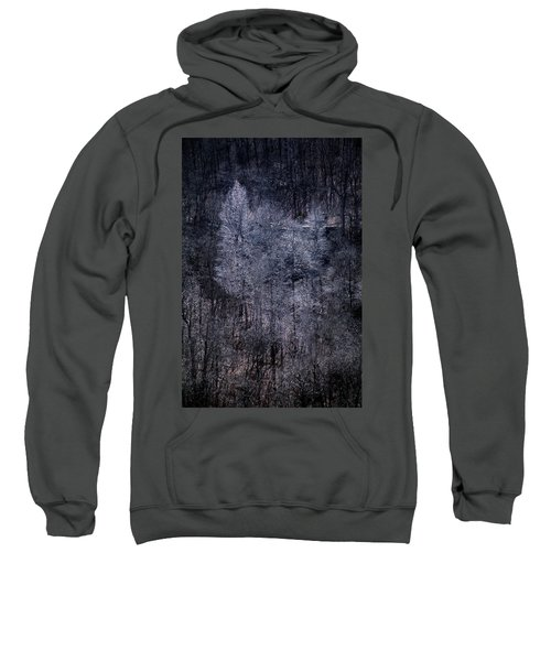 Ozarks Trees #6 Sweatshirt