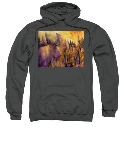 Pagami Fading Sweatshirt