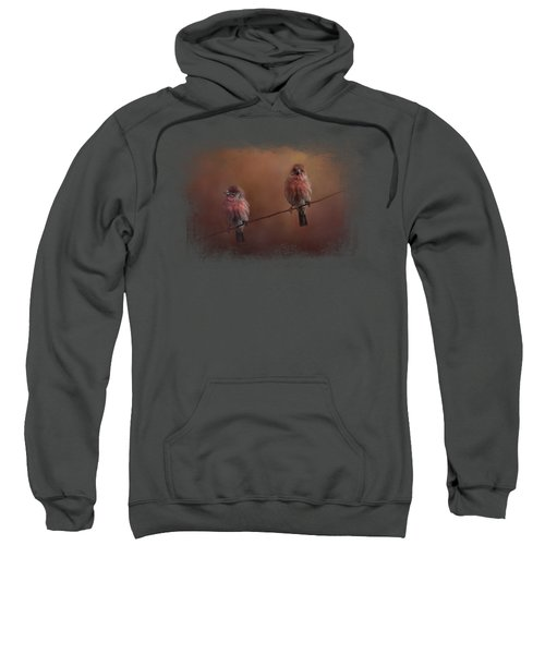 Pair Of Finches Sweatshirt by Jai Johnson
