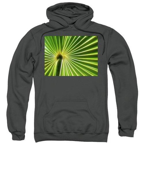 Palm Glow Sweatshirt