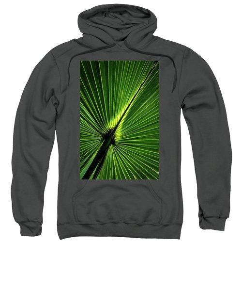 Palm Tree With Back-light Sweatshirt