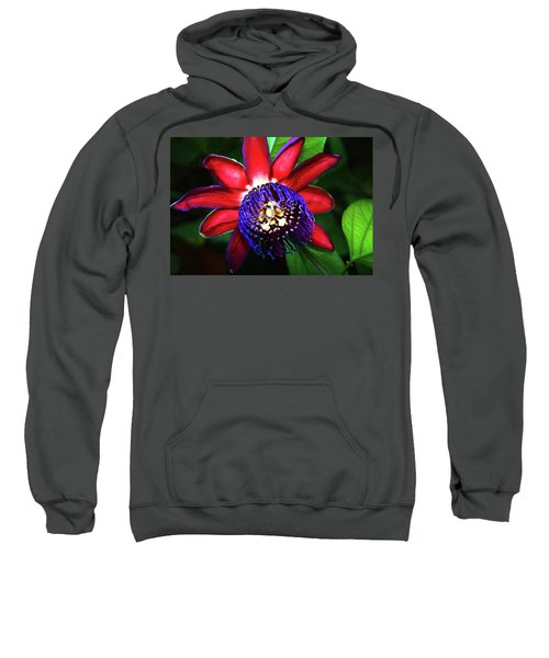 Passion Flower Sweatshirt