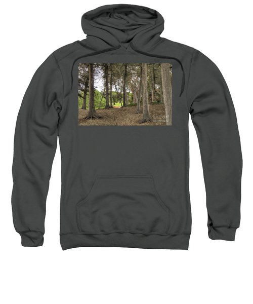 Past The Beach And Through The Trees Sweatshirt