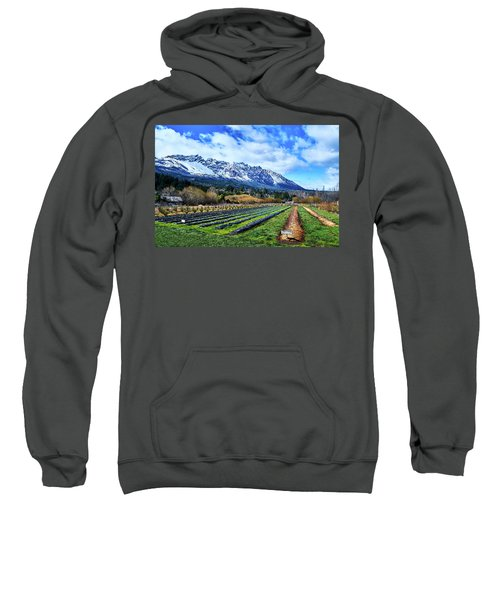 Landscape With Mountains And Farmlands In The Argentine Patagonia Sweatshirt