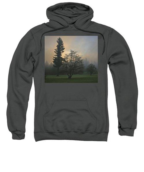 Patchy Morning Fog Sweatshirt