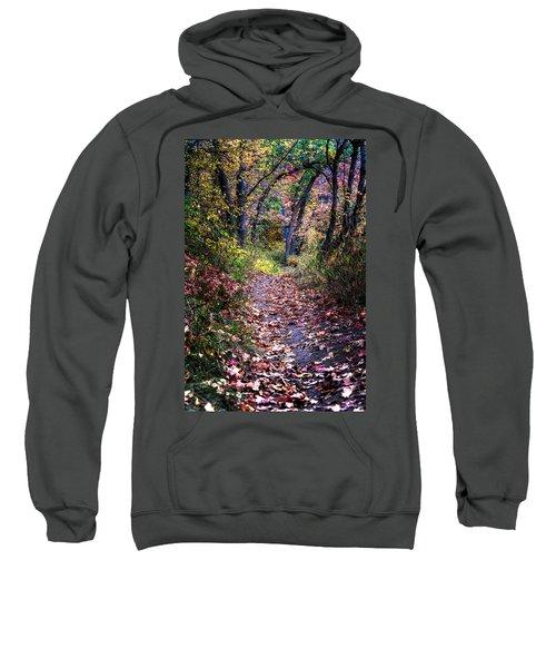 Path Of Leaves Sweatshirt