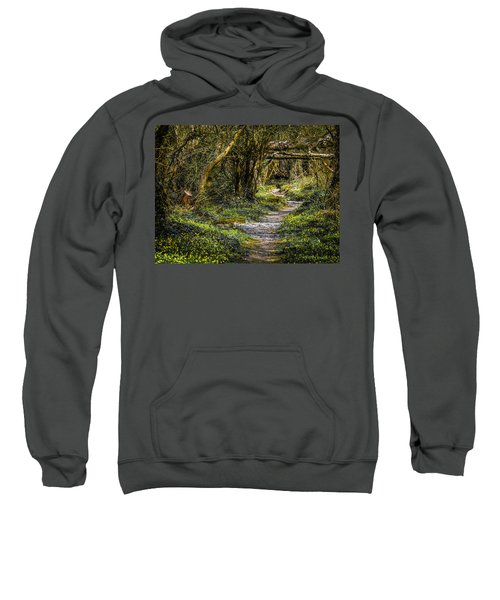 Sweatshirt featuring the photograph Path Through Yeats' Fairy Forest by James Truett