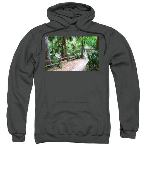 Path To Shade Sweatshirt