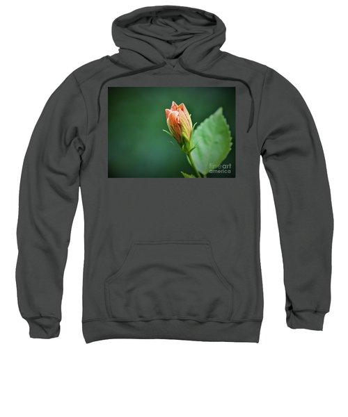 Peach Buddy Sweatshirt