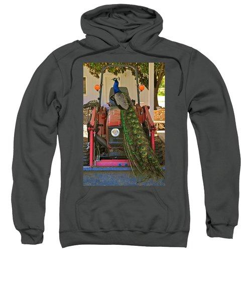 Peacock And His Ride Sweatshirt