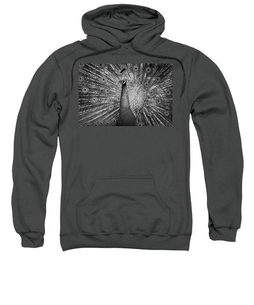Peacock In Black And White Sweatshirt