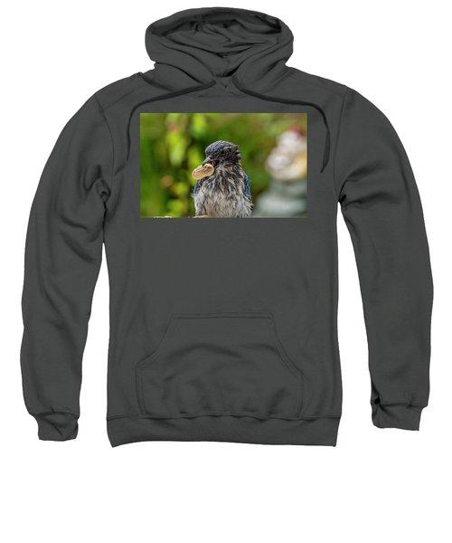 Peanut Hunter Sweatshirt