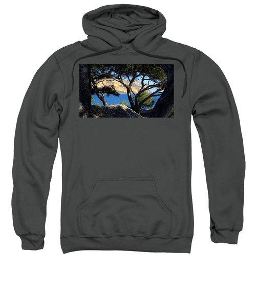 Peeping Through Pines Sweatshirt