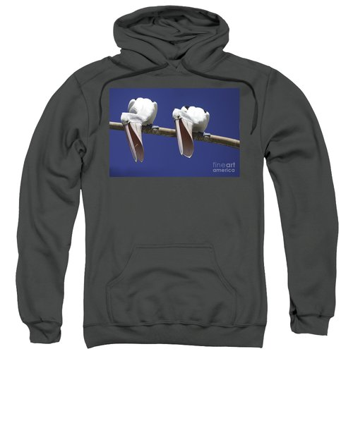 Pelican Burp Sweatshirt