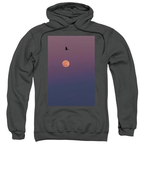 Pelican Over The Moon Sweatshirt