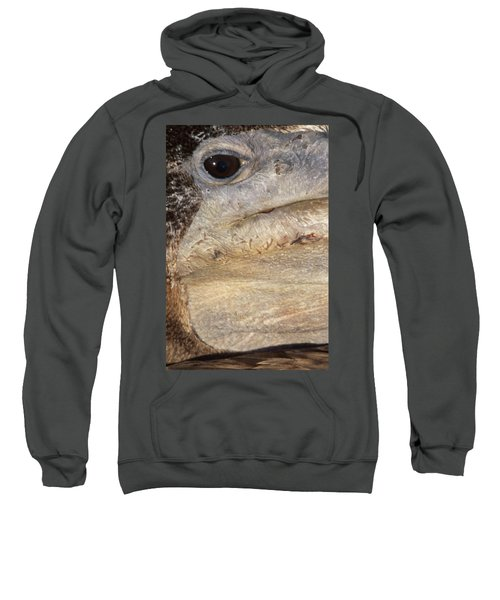 Pelican's Eye Sweatshirt