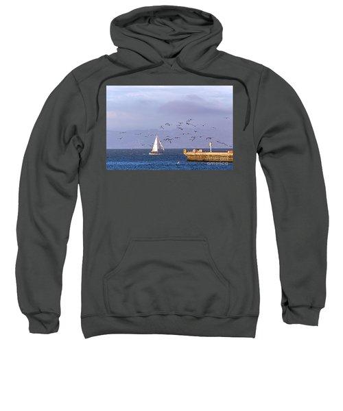 Pelicans Pelicans Sweatshirt