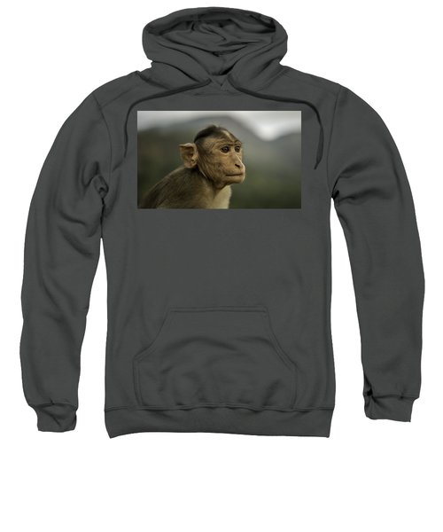 Penny For Your Thoughts Sweatshirt
