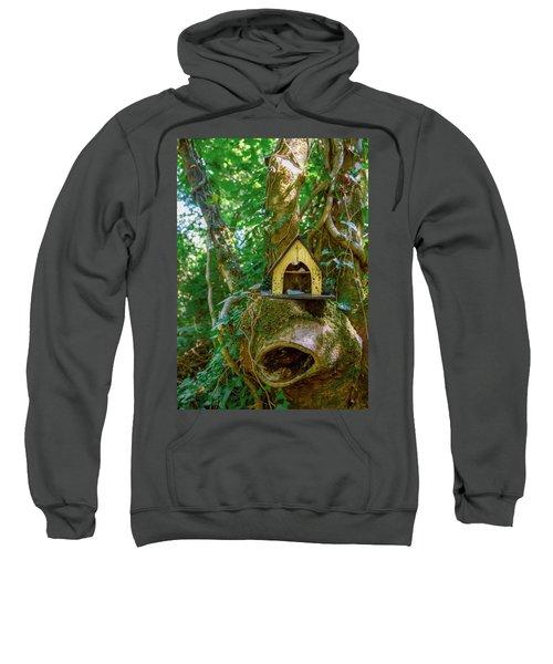 Perch Sweatshirt