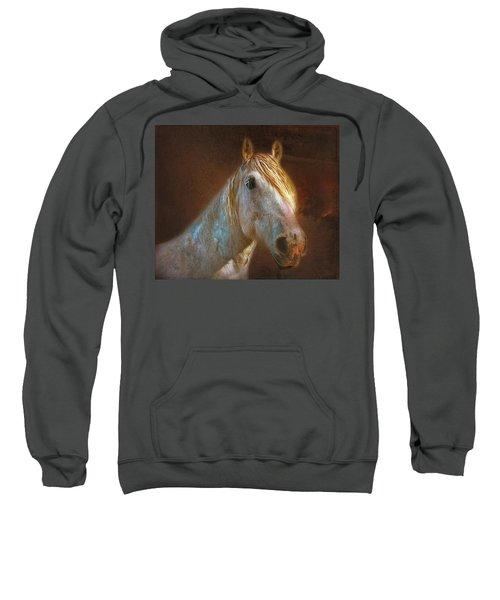 Percheron  Sweatshirt